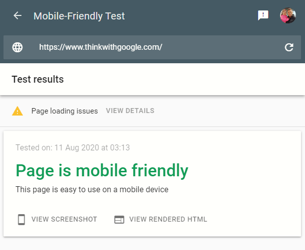 Google's Mobile Friendly Test Results