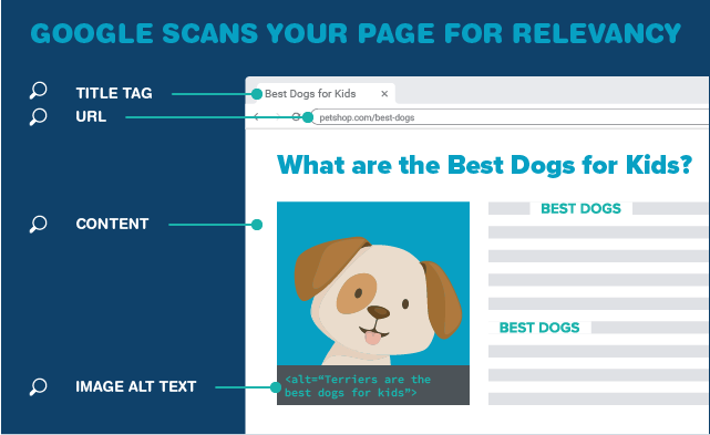 Google scans your page for relevancy.